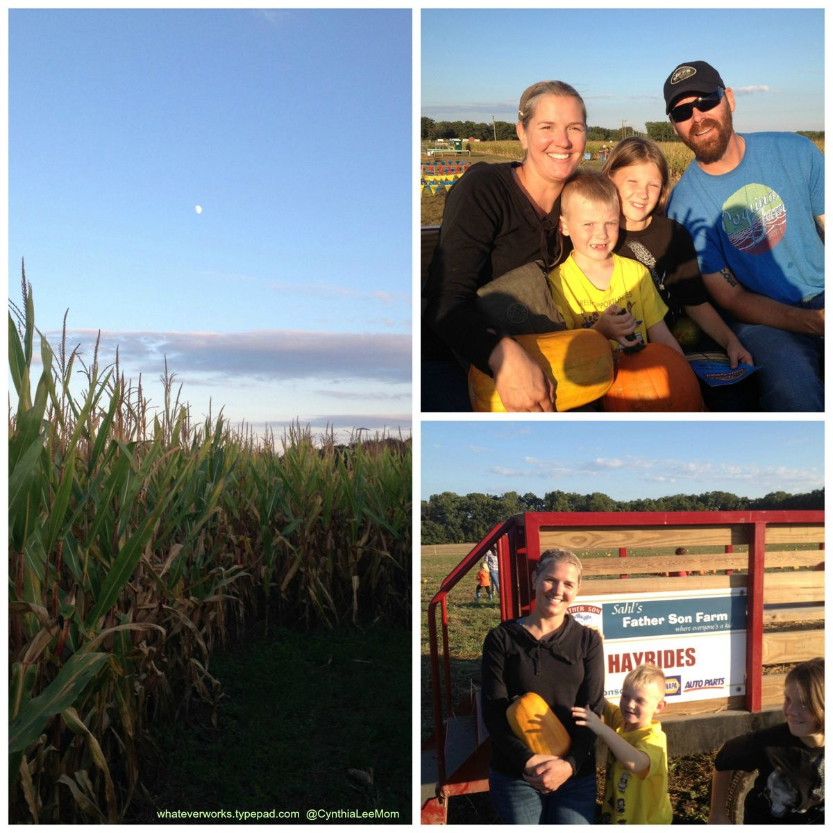 Sahl S Father Son Farm In Egg Harbor Nj Great Fall Time Family Fun Whatever Works
